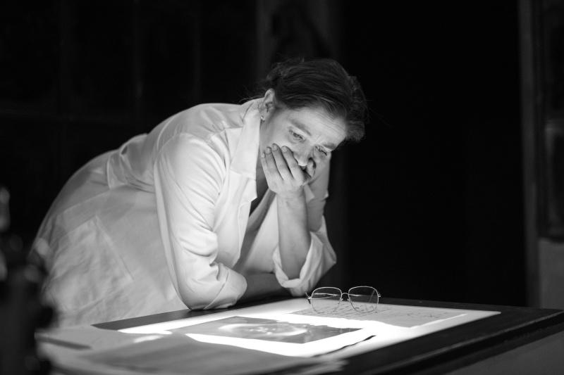 Snímek 51 - portrét britské vědkyně Rosalindy Franklinové - 17. ledna